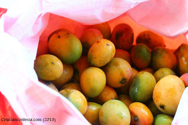 Bag of Mangoes2